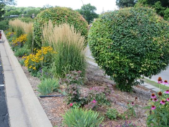 Curb Garden 2013